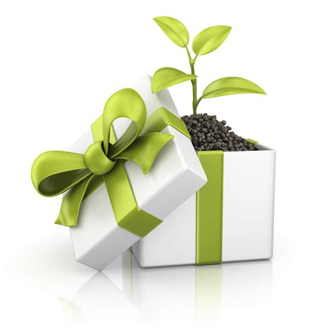 sustainable gifts green shopping eco friendly products sustainable living
