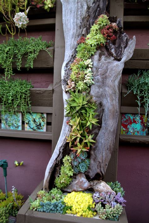 succulent planter ideas 70 indoor and outdoor succulent garden ideas shelterness