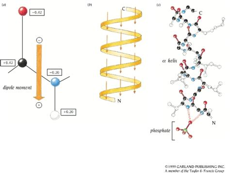 cadenas queratinicas em leccion 1