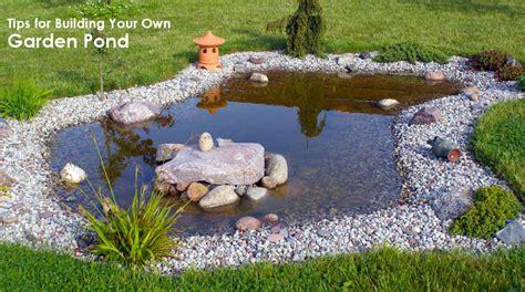 building backyard pond backyard trout pond ask home design