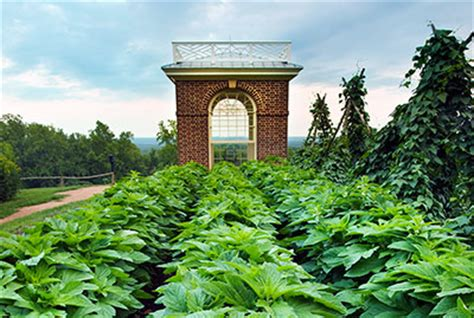 the vegetable garden the vegetable garden jefferson s monticello