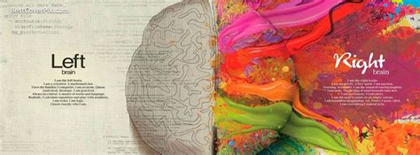 cover photo left brain right brain stylish cover photo
