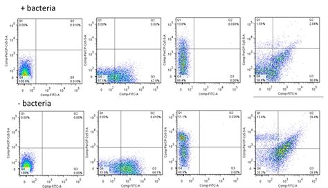 flow cytometry compensation how do i confirm false positives in flow cytometry