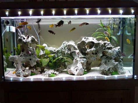 aquarium decoration ideas freshwater aquarium decorations http monpts some