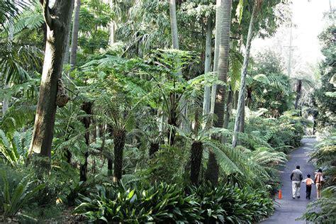 royal botanic gardens melbourne royal botanic gardens