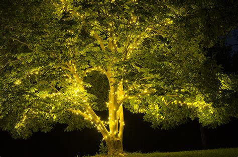 summer tree lights 28 images tree lights for and