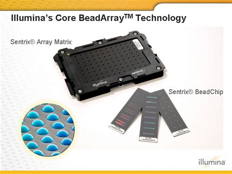 bead chip sentrix r array matrixsentrix r beadchipillumina s