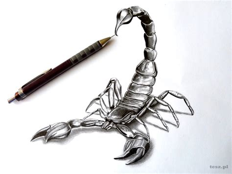 how to draw a scorpion tribal tattoo design style