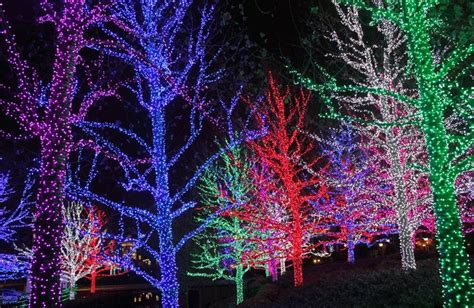 best lights show 8 of the best light shows in canada wheels ca
