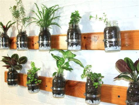 hanging wall garden 6 creative hanging gardens that you can make yourself