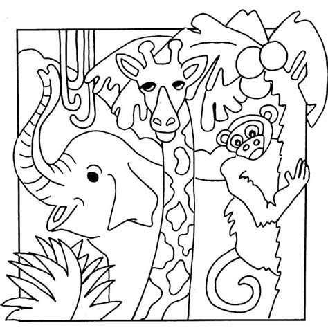 coloring book pictures of animals jungle safari coloring pages images of animal coloring