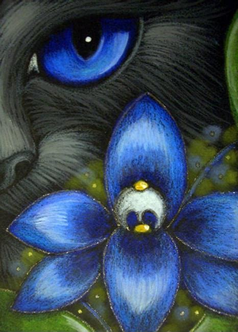 black cat painting step by step black cat blue orchid flower by cyra r cancel