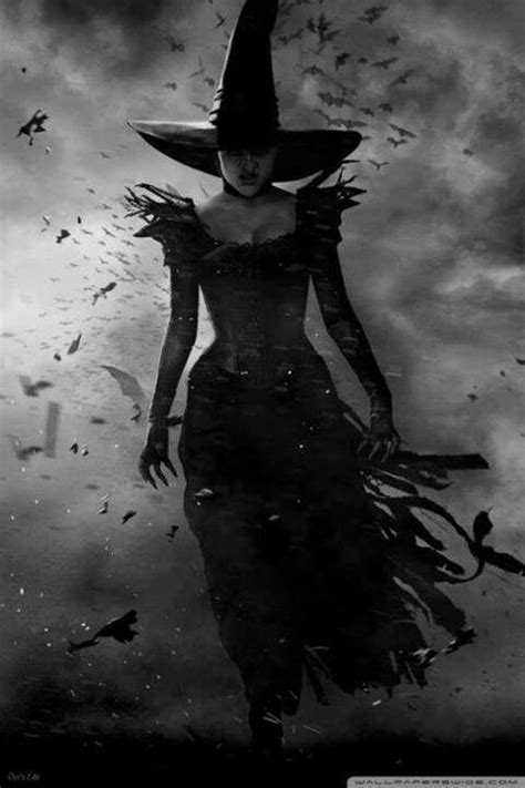 for a witch 372 best witches images on