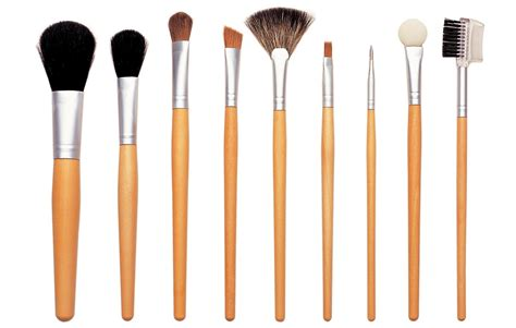 makeup brushes pass but not with flying colors witch hazel