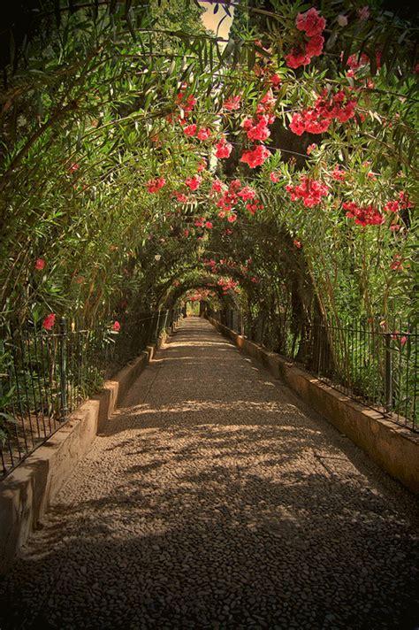 flower tunnel alhambra cactus garden granada notmanhattan