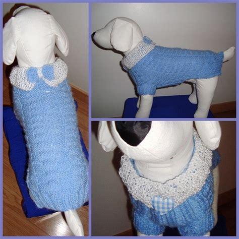 comment tricoter un gilet pour petit chien