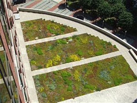 Extensive Vegetative Roofs   WBDG Whole Building Design Guide