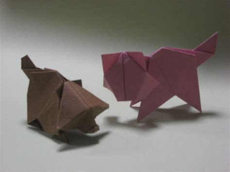 origami raccoon origami cat and raccoon by h on deviantart