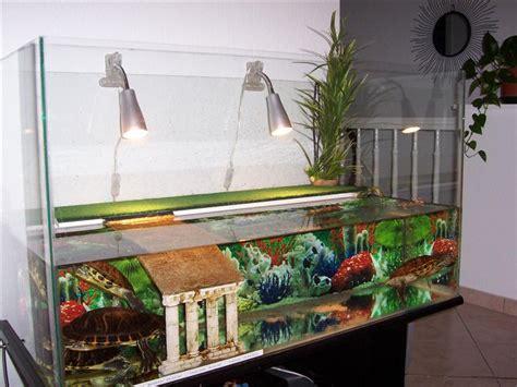 mod 232 le d 233 coration aquarium tortue d eau