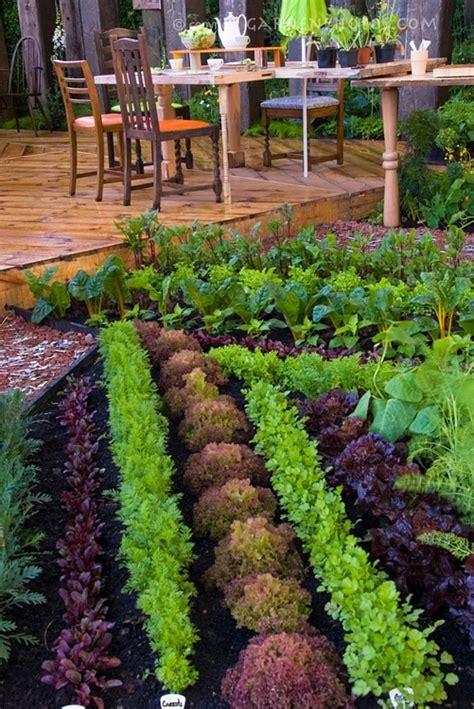 garden food ideas happy may weekend