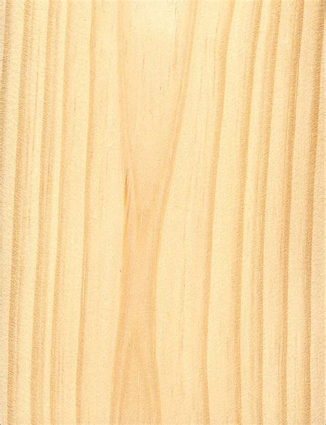 virginia woodworking virginia pine the wood database lumber identification