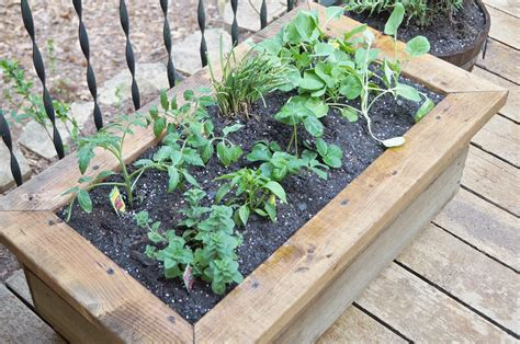 planter boxes diy customized wood planter box diy done right