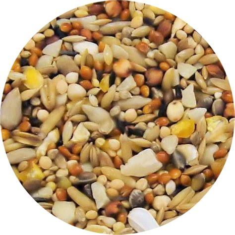 seed wholesale birdseed black sunflower seeds birdseed