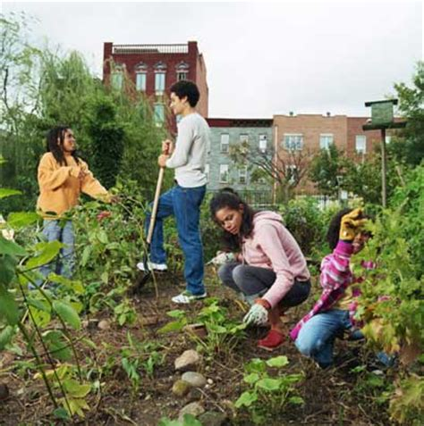 Garden Of Commune Thoughts On Architecture And Urbanism Gardeners Root For