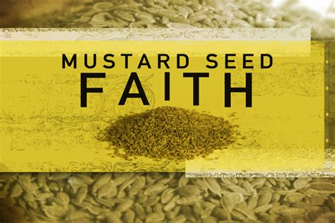 part time priest: Mustard seed sermon
