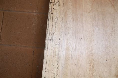 palm woodwork palm wood spalted wormy fw13153 far west forest