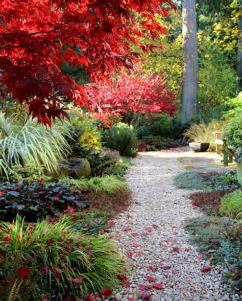 types of pathways in landscaping 25 most beautiful diy garden path ideas a of rainbow