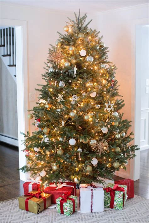 lights on tree how to hang how to hang tree string lights popsugar home