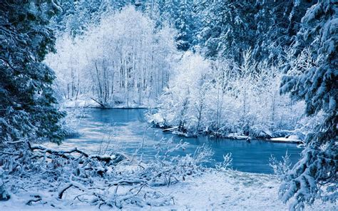 for winter the winter 1440x900 wallpapers 1440x900 wallpapers