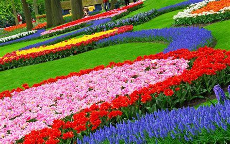 images of flowers in the garden garden design fascinating colorful garden decoration
