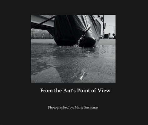 point of view picture books from the ant s point of view by photographed by marty
