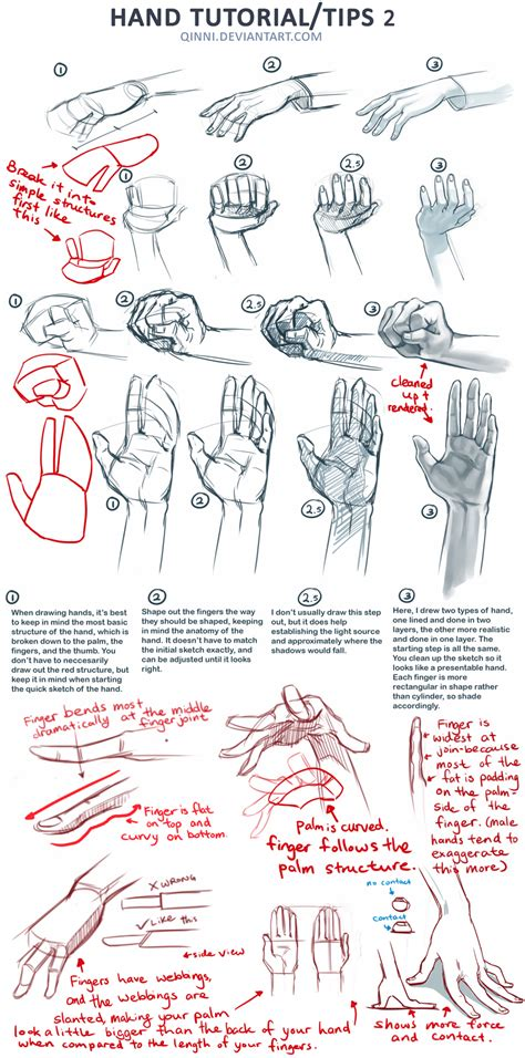 drawing tutorials gripping tutorials on how to draw maca is rambling