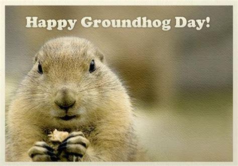 groundhog day hd groundhog day wallpaper wallpapersafari