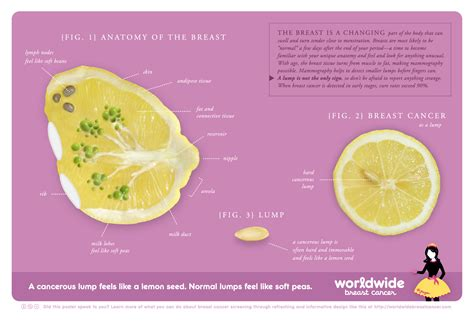 what do feel like your lemons be