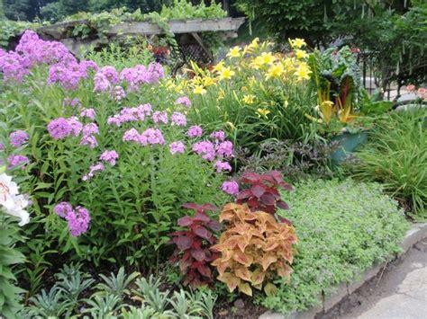 garden border plants flowers perennials flower beds borders