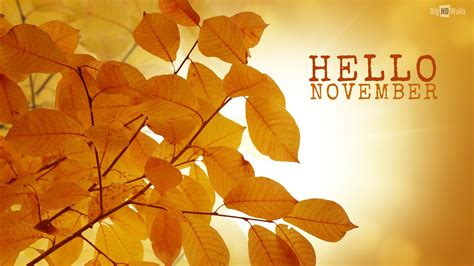 for november hello november hd wallpaper bighdwalls