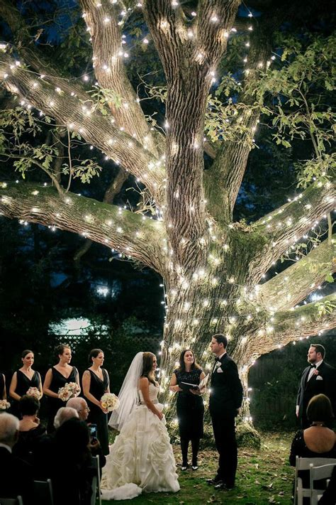 light up trees for weddings moonlight pennsylvania wedding a sparkling tree at
