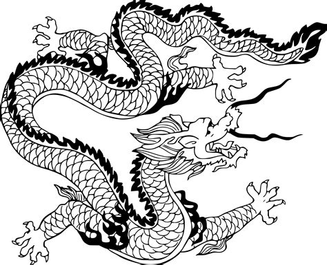 coloriage dragon chinois dessin 224 imprimer sur coloriages
