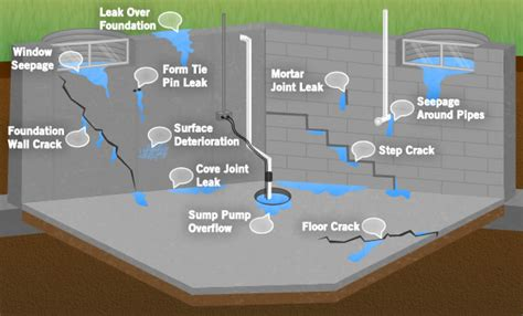 forte waterproofing problems we fix