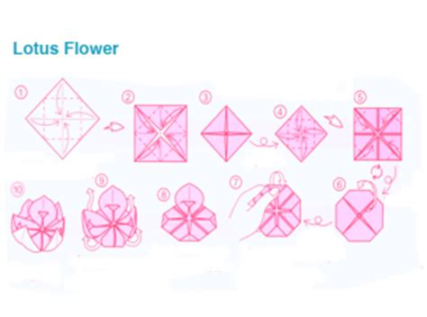 how to fold origami lotus origami lotus flower