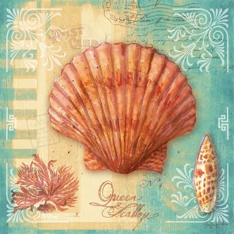 decoupage pictures to print scallop by geoff allen gallery wrap by ingallery