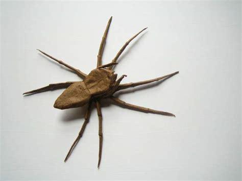 spider web origami fisher spider