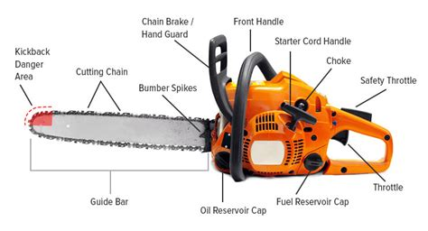 chain and components chainsaw buying guide chainsaw journal