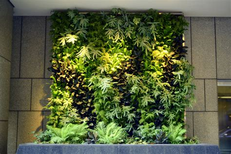 garden on wall plants on walls vertical garden systems 6 months