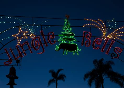 san diego zoo lights san diego attractions offer festive this winter