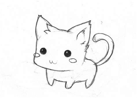 cat easy drawings dr